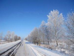 Дорога к монастырю, деревья в снежно-кружевном наряде встречают всех приезжающих