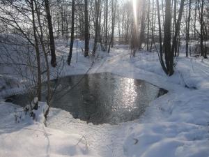 Источник Пресвятой Богородицы недалеко от монастыря – зимний пейзаж