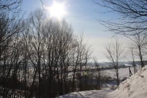 Зима 2021_12